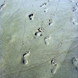 Sand in Campbay